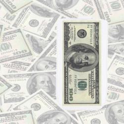 Pochette universelle DOLLARS pour telephones et lecteurs mp3